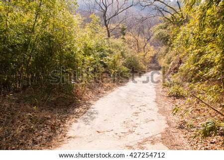 The quiet mountain path/The quiet mountain path - stock photo