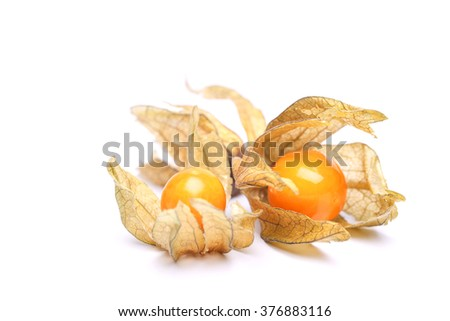 the raw physalis - stock photo