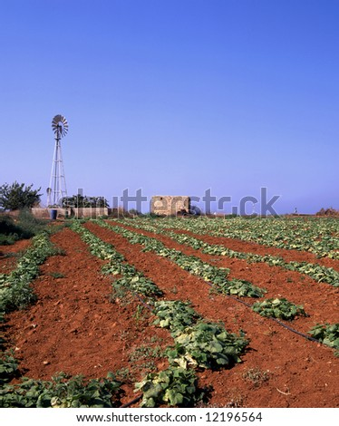 The red soil of a field in Cyprus with wind pumps providing irrigation - stock photo