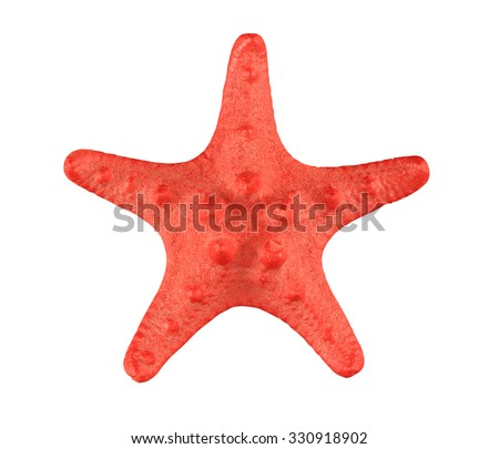 The red starfish close-up isolated