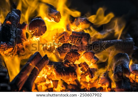 The red warm/hot flame on the winter - stock photo