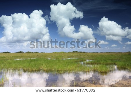 The reflection of beautiful cloud formations in the Florida Everglades Landscape - stock photo
