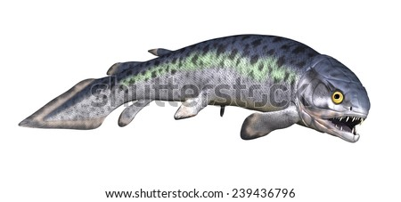 The Rhizodus was a very large (6 to 7 meters) prehistoric fish with long teeth and fangs - 3D render. - stock photo