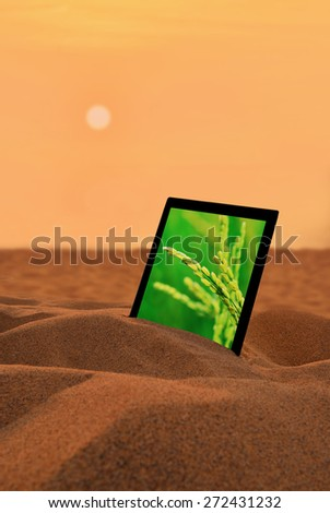 The rice in the tablet PC on the desert.Agriculture of the image,Concept for growing business, ecology, freshness, freedom and other lifestyle issues.  - stock photo