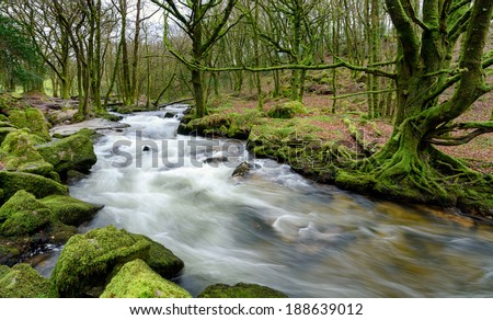 The River Fowey as it cascades over moss covered rocks and boulders at Golitha Falls on the southern edge of Bodmin Moor in Cornwall - stock photo