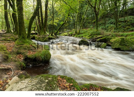 The river Fowey as it flows through Golitha Falls a steep wooded valley on Bodmin Moor in Cornwall - stock photo