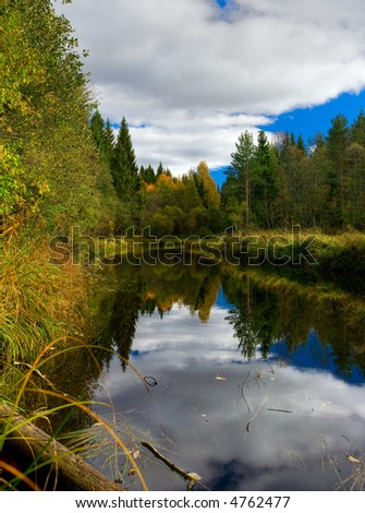 The river in a beautiful autumn wood
