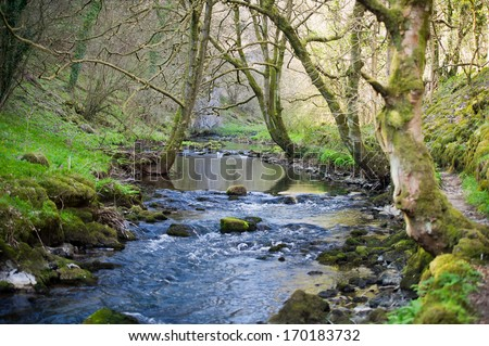 The River Wye, South of Buxton, The Peak District National Park, Derbyshire, UK. - stock photo