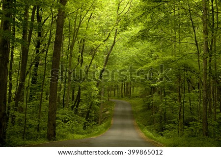The Road Ahead - Roaring Fork Motor Trail in the Great Smoky National Park