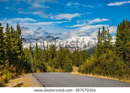 The road goes among the mountains and forests yellowed. Canadian Rockies in beautiful autumn day