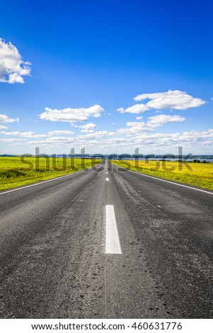 The road goes into the distance through the field on a background of a beautiful summer landscape