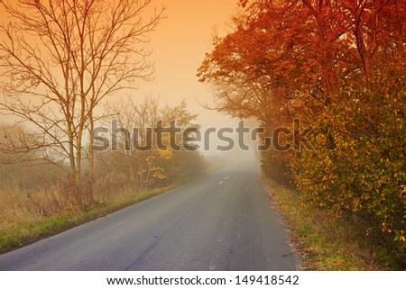 The road in fog at dawn in the autumn