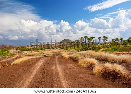 The road in the African savannah  - stock photo