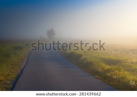 The Road In The Mist - stock photo