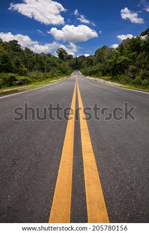 The road through the forest - stock photo