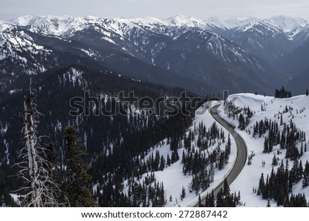 The Road to Hurricane Ridge in the Olympic Mountains - stock photo