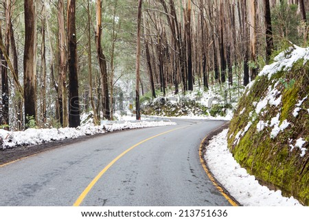 The road to Lake Mountain in Yarra Ranges National Park after a snow storm in Victoria, Australia - stock photo