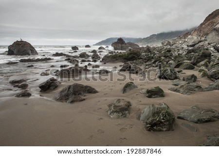 The rocky coast of northern California, near Mendocino, is home to extensive kelp forests and intertidal tide pool life. This beautiful and diverse area is often exposed to heavy weather. - stock photo