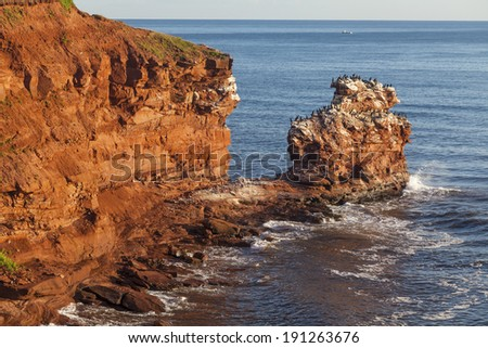 The rocky shore of Prince Edward Island at daybreak illuminating the cliffs and rocks bright red. A colony of cormorants clings to a distant rock stack. - stock photo