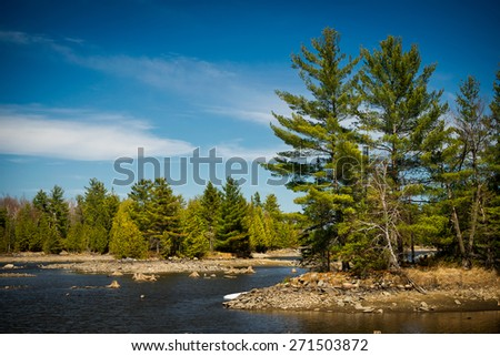 The rocky shores of a Canadian lake in the Ontario wilderness evergreen forest.