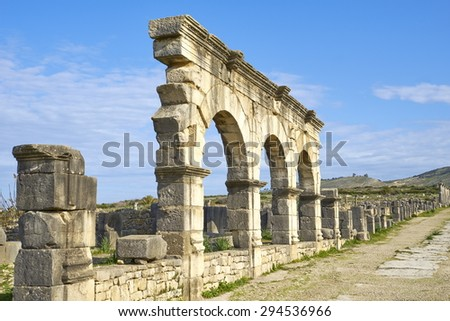 The Roman ruins of Volubilis, Meknes region, UNESCO, Morocco