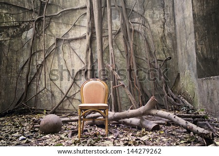 the roots on the wall and the empty chair - stock photo