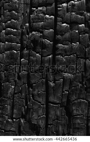 The rough pattern of dark cracks and highlights from the charred area of a burnt log results in a pleasing natural abstract texture. - stock photo