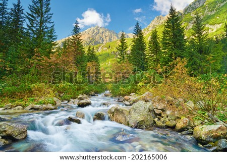 The Roztoka Stream in Roztoka Valley. Tatra National Park. The High Tatras, Carpathian Mountains. Nature reserve. - stock photo