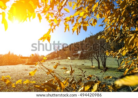 The rural houses on the mountain farm in forest under rocks. Morning frost in magical golden autumn. In the backlight warm sunbeam light and a light shallow fog.