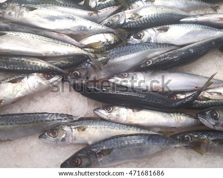 The Saba fish in a market