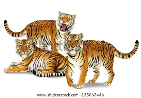 The safari - tigers - wildlife - illustration for the children
