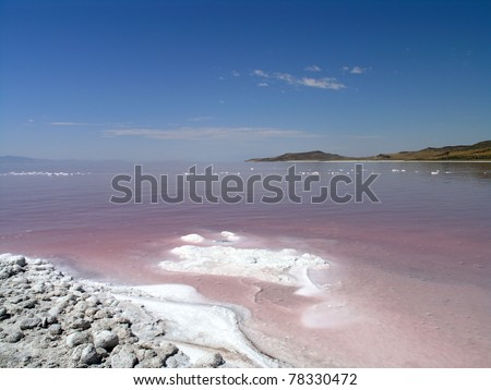 The salty shore of the great Salt Lake with mountains in the background. The water looks pink due to a special algae that grows in high levels of salt. - stock photo