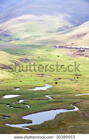 The scenery of plateau alpine meadow ranch