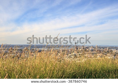 The scenic Auckland's city view from Mount Eden. - stock photo