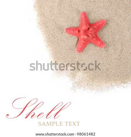 The sea Starfish isolated on white background - stock photo