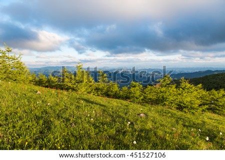 The sea Tuo mountain grassland and woods
