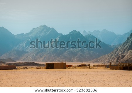 The settlement of nomads in the Arabian desert