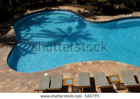 The shadow of a palm is reflected on a pool at a resort hotel on the Big Island of Hawaii. - stock photo