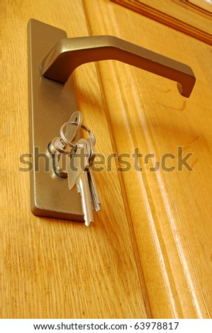 The sheaf of keys is inserted into a keyhole near to the door handle - stock photo