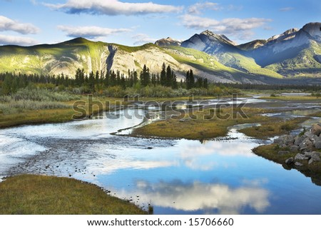 The silent river surrounded by fur-trees and bushes in the autumn - stock photo
