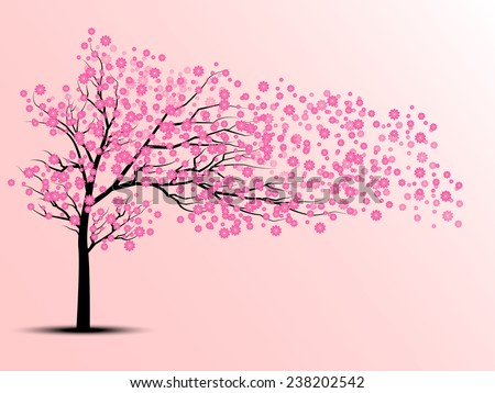 the silhouette of cherry trees - stock photo