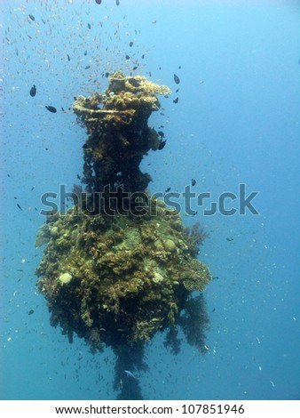 The sinkers - artificial reef at Red sea - stock photo