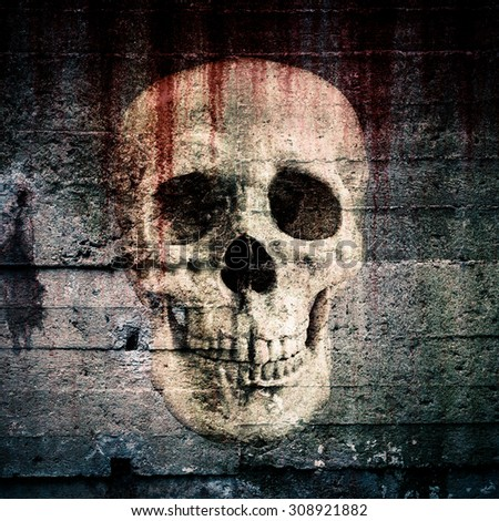 The skull is shown in a old concrete wall - stock photo