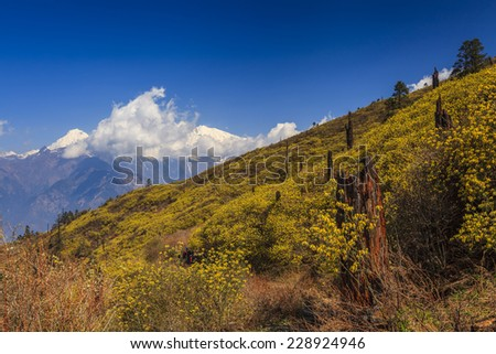 The slope on a background of distant high mountains  - stock photo