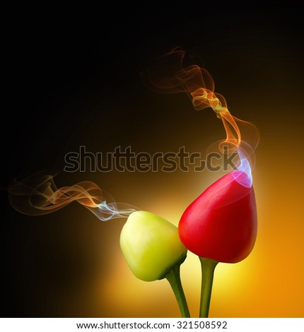 the smell coming from the pepper fruit on the dark background - stock photo