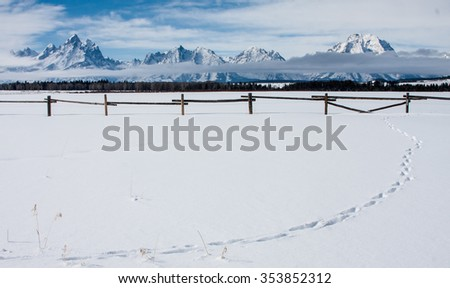 the snowy teton mountain range behind an old wooden fence and a pure white snow field broken by a line of tracks - stock photo