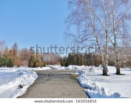 The Spring. Frosty April morning in the botanical garden in Lodz. My first walk.3 - stock photo