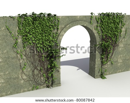 The stone wall with ivy  - stock photo