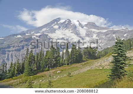 The summit of Mount Rainier from the Alpine meadows - stock photo