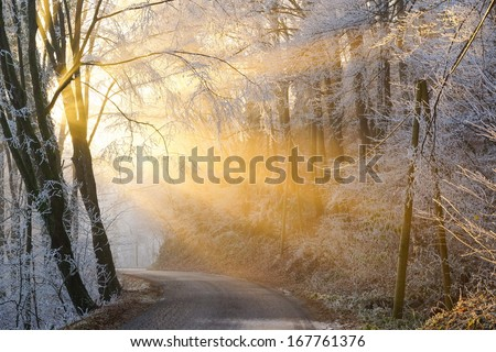 the sun's rays pass through the fog in winter - stock photo
